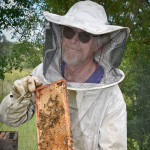 Ian-Gourlay--Bee-Resistant-Campaign